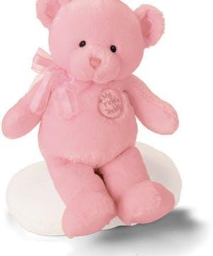 Pink plush teddy bear for newborn baby girl.