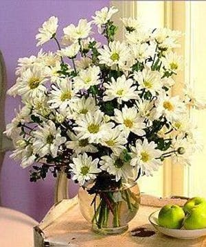 Spread some office cheer around with daisies...