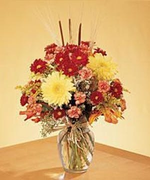 Choice Cut Long Lasting Flowers