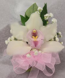 Corsage of a white cymbidium orchid and pink ribbon.