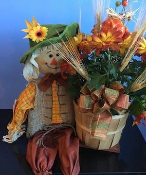 Scarecrow Mum Plant