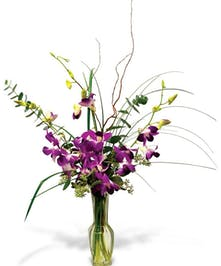 Purple cut orchids in a tall vase