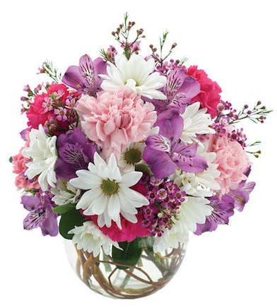 Bubble bowl filled with pink, purple and white daisies, carnations and alstroemeria
