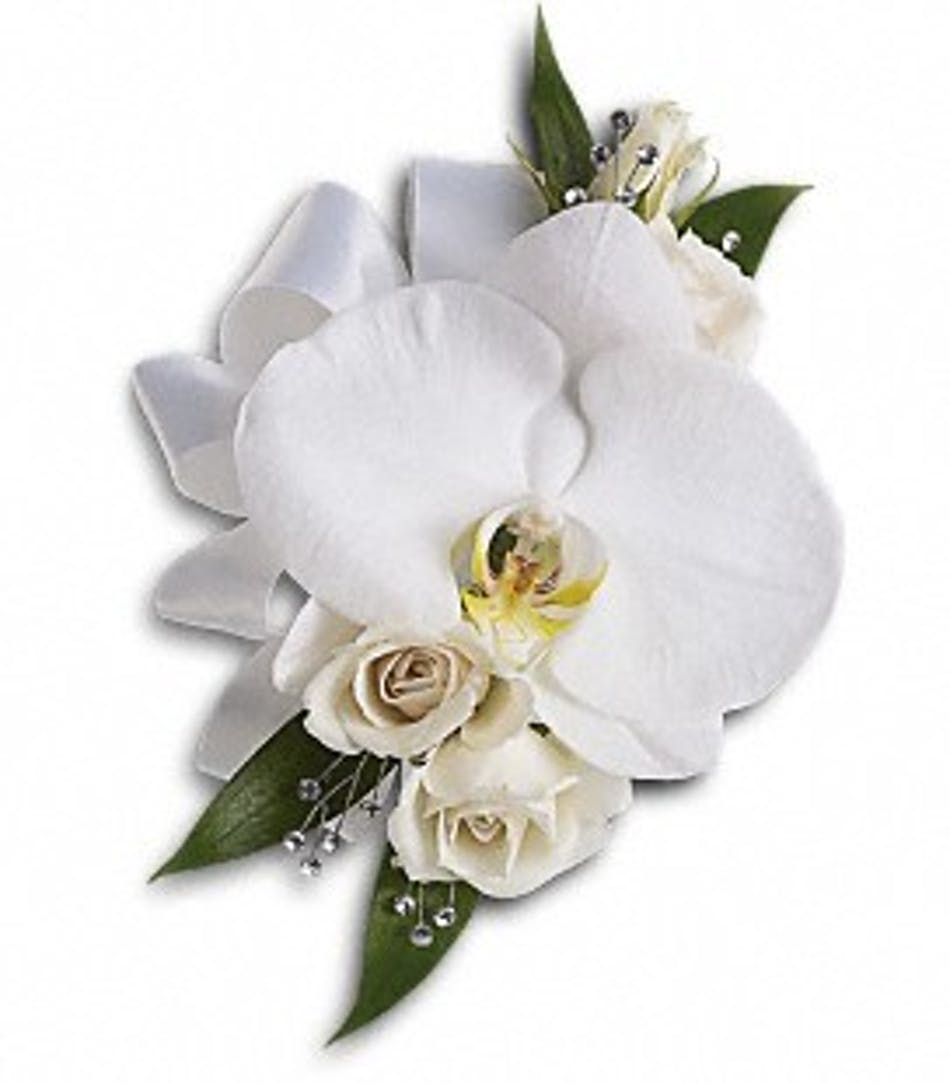 Corsage featuring a white phaelenopsis orchid.