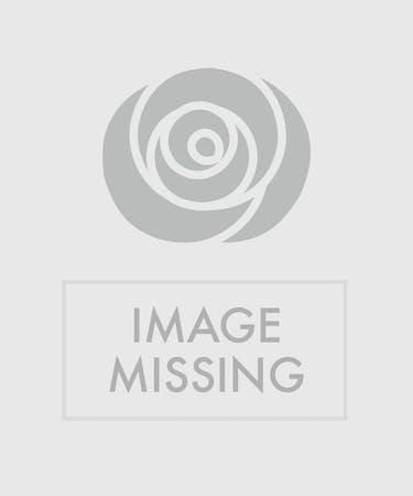 Wondrous Strawberry Shortcake Staten Island Ny Floral Cakes Moravian Funny Birthday Cards Online Alyptdamsfinfo